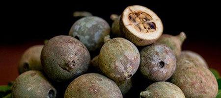 Histoire L'arbre Genipa Fruit Jagua